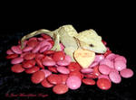 VALENTINE DAISY 2 by Heather-Chrysalis