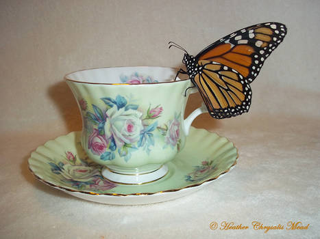 A CUP OF TEA FOR SWEETIE