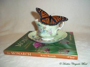 BUTTERFLIES, TEA, AND BOOKS