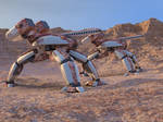 Desert Tri Walkers