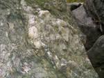 Rocks Forest State Park 9