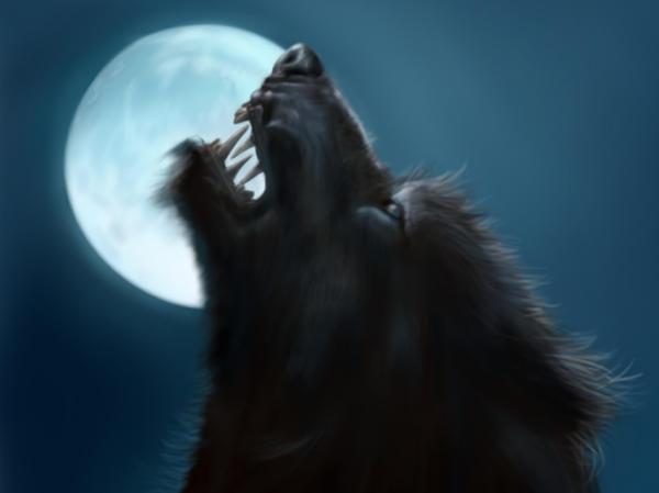 Werewolf by jinkies36