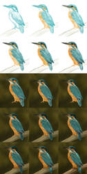 Kingfisher Step-By-Step by jinkies36