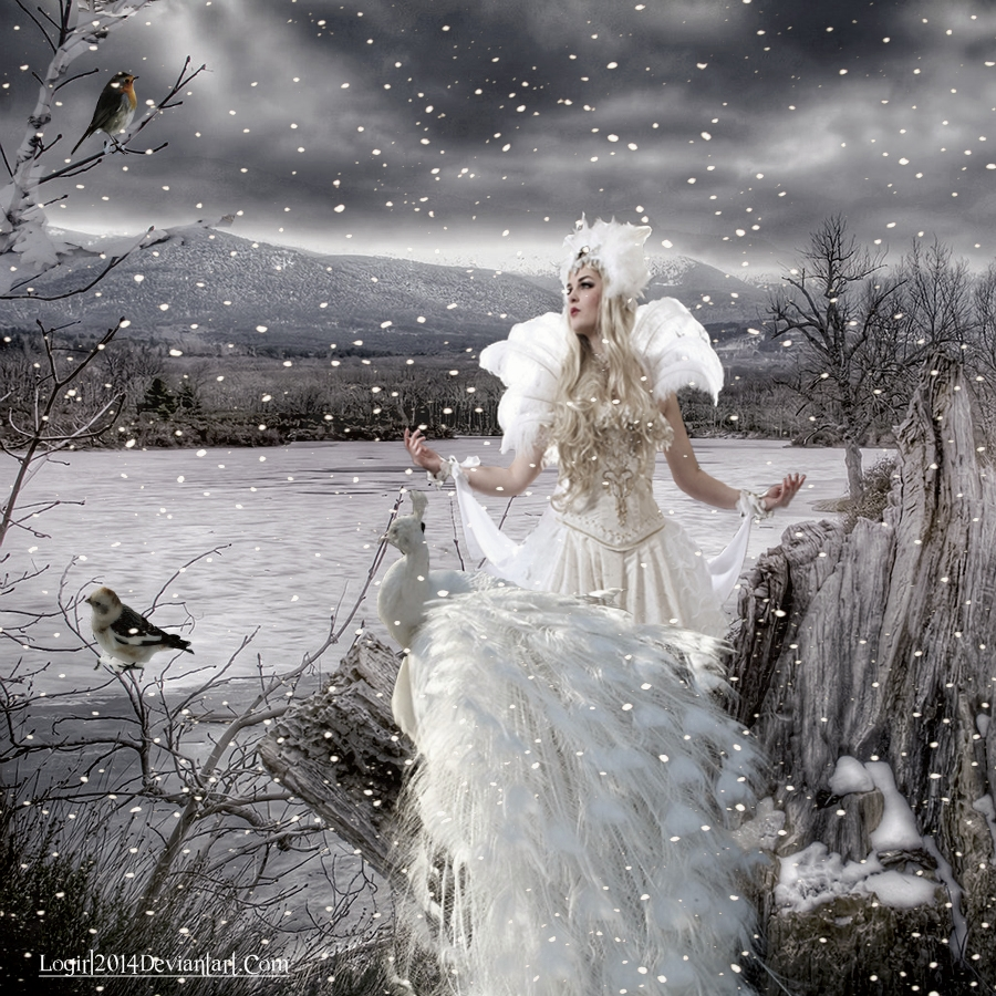fairy of snow