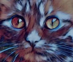 little cat by little-one-girl