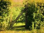 Free stock * Garden gate * for manips!