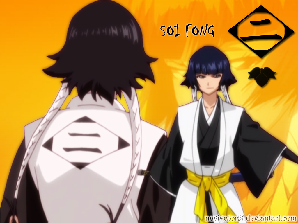 Bleach imagenes grosas capitanes y tenientes taringa for What is the soi