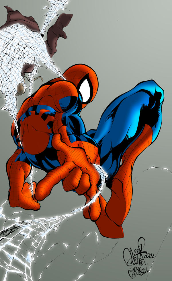 Colours: Spider-man Web by wrightauk