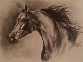Arab Sketch by Fire-n-ash