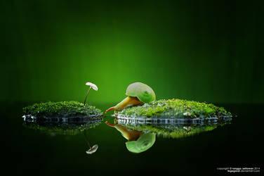Fairy Tale by tegegasal
