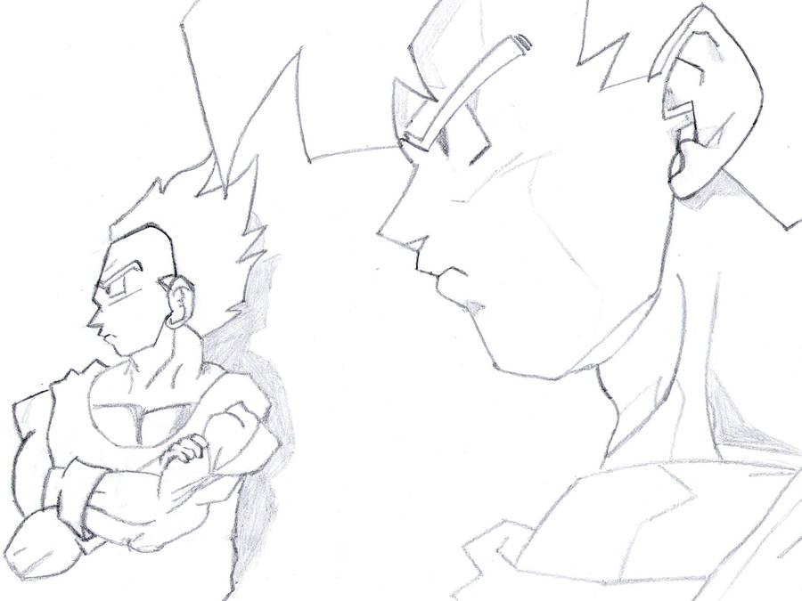 Goku and Vegeta from DBZ by leozer