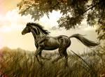 Black stallion Updated by Iselinka