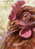 The Hen by sschukina