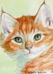 ACEO Ginger kitten