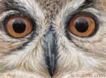 ACEO Eagle Owl