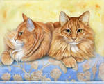 Ginger Cats Portrait