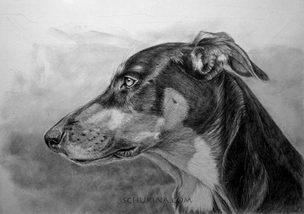 My dog profile by sschukina on deviantart my dog profile by sschukina ccuart Choice Image