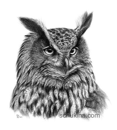 Eurasian Eagle Owl by sschukina