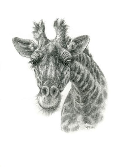 The giraffe by sschukina