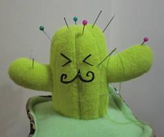 Dom Cactus