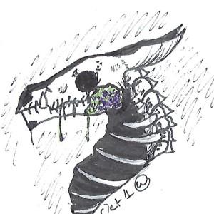 the-weirdo-drongo's Profile Picture