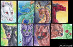 ACEO Cluster - Kat -