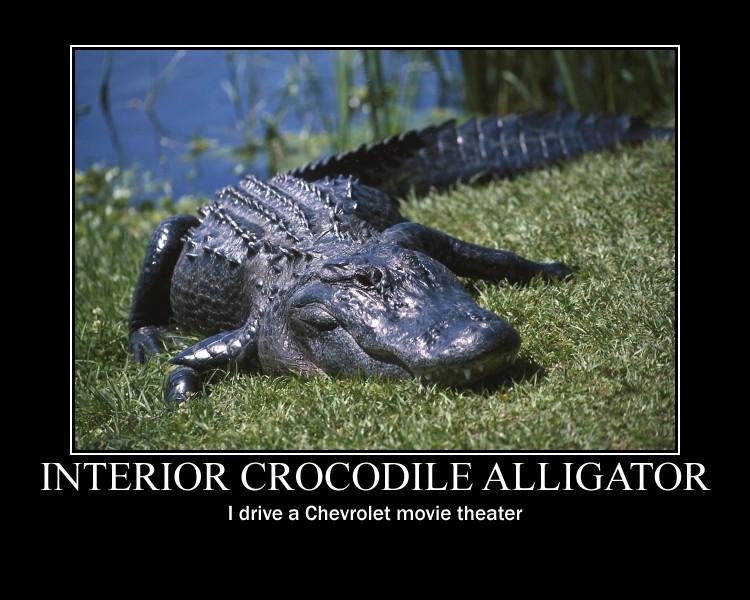 Interior Crocodile Alligator Dubstep Music
