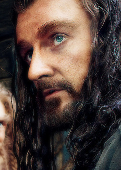 Thorin x Reader } Forever beat for you   by Ghost-Of-Midnight on