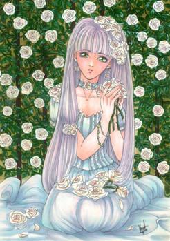 Lady Snow Rose