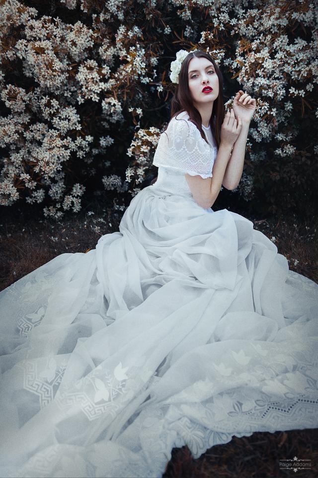 Bloom I by Paige-Addams