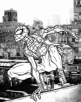 Punk/Anarchy Spider-Man