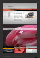 Elegant Corporate XML Template by pezflash