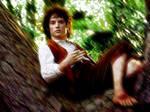 Frodo Wallpaper 2