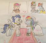 Rainbow Dash and Soarins wedding