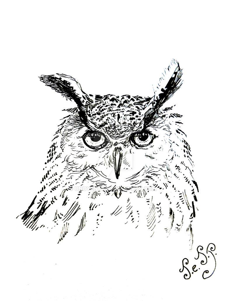 Owl Head... by Unoyente