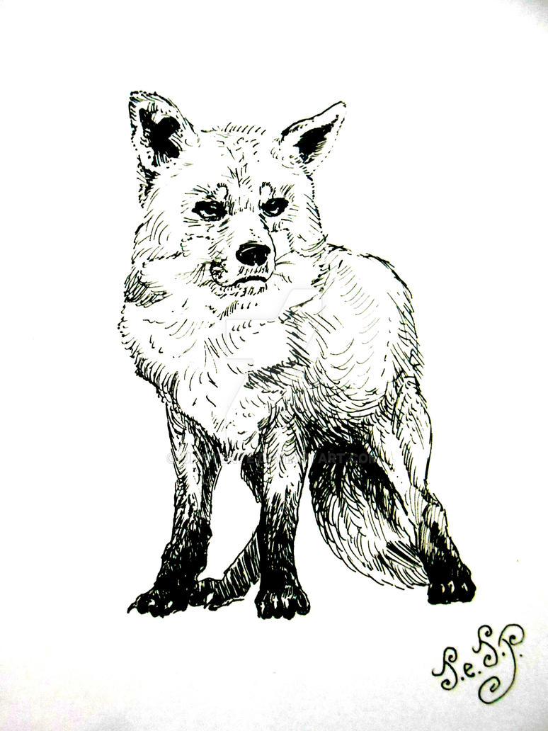 Fox... by Unoyente
