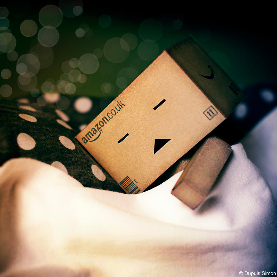 danbo sleep by Simon120188