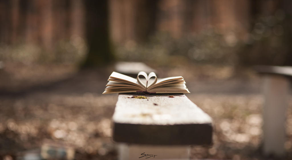 Lovely Books by Simon120188
