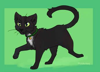 Kitty by meroaw