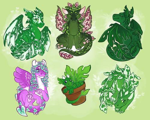 [merch] plant dragons