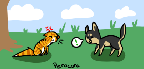 Tiny GSD Puppy and Maine Coon by Perocore