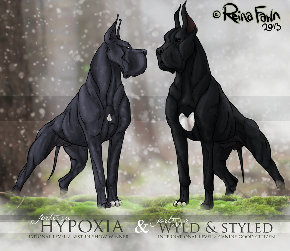 Cosmo x Hypoxia by reinafawn