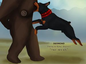 Dermond FR-Brevet