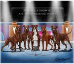 Bully Show Breeders Stakes xx LOKI x BETH