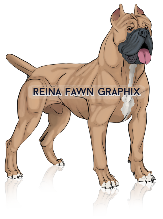 RFGraphix by reinafawn