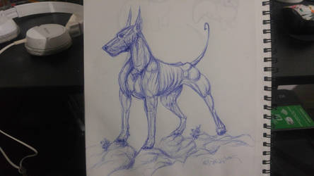 some sort of dog by reinafawn