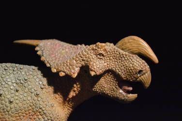 Safari Einiosaurus