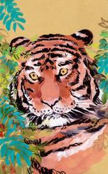 Tiikeri by jossujb
