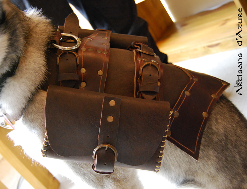 Dog harness - Harnais a chien by ArtisansdAzure