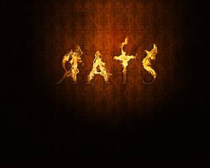 Rats - Wallpaper